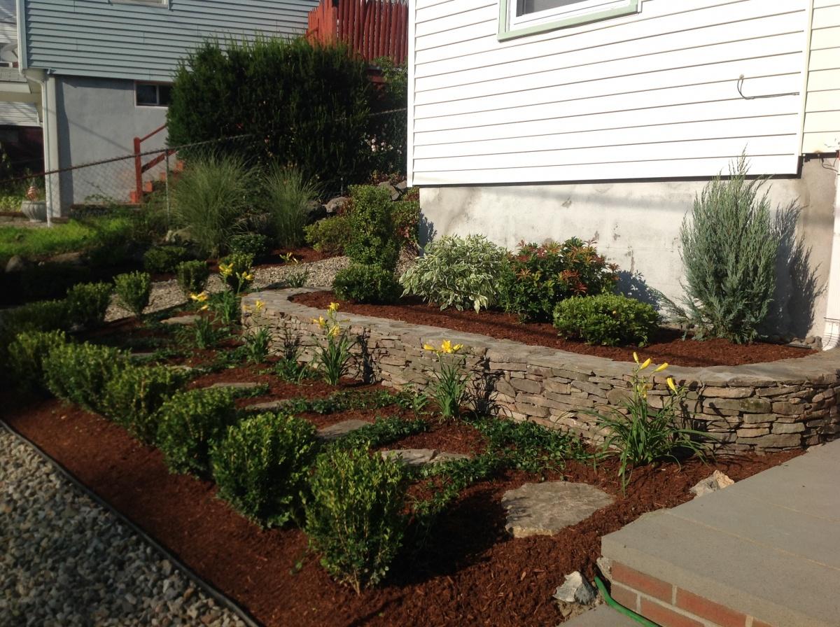 Natural flat fieldstone, garden wall, hemlock mulch