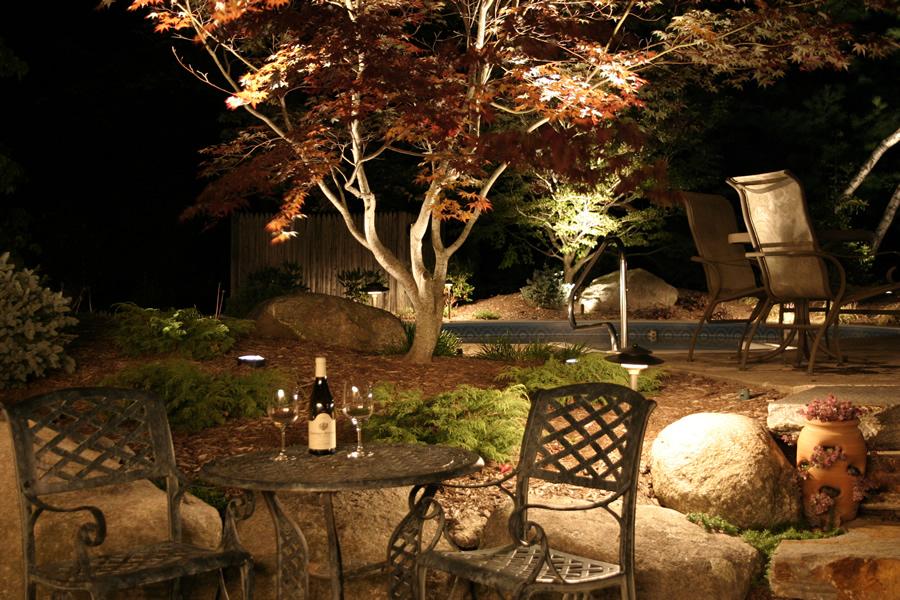 garden lighting for trees