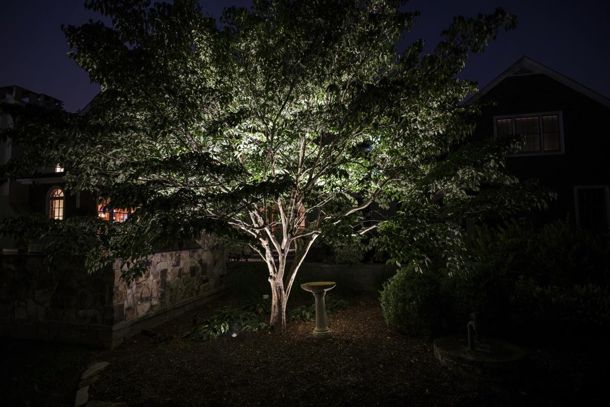 Flora lighting installation, Reading, MA