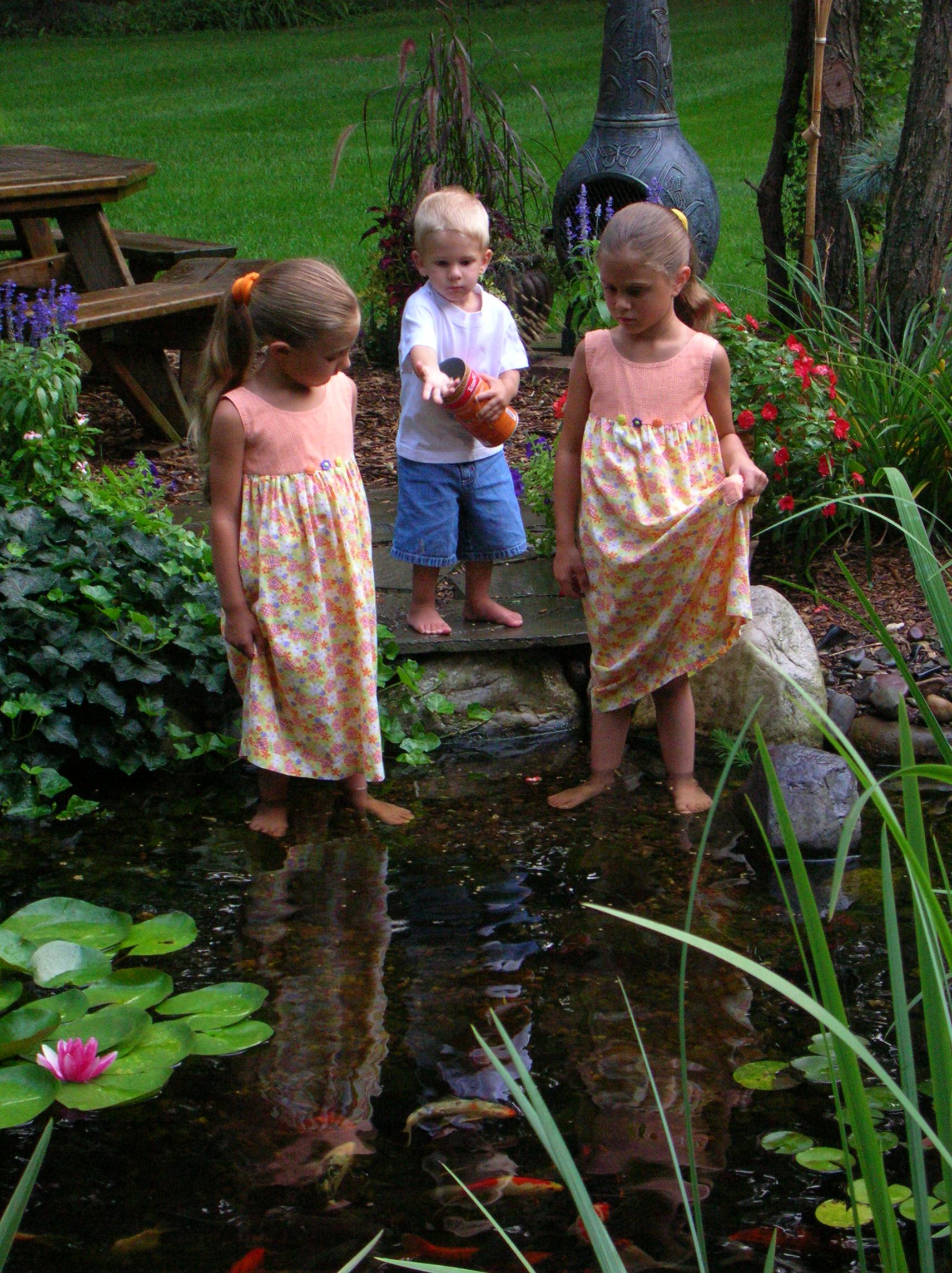 Coy pond, Andover, MA