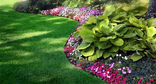 colorful floral mix