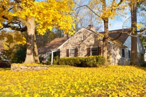 oakland-county-landscaper-gives-fall-landscape-cleanup-tips
