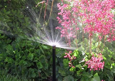 irrigation systems near me
